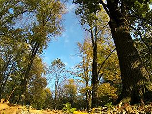 Đakovo – jesen u parku